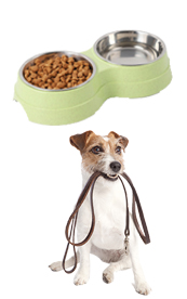 September - pet supplies and care