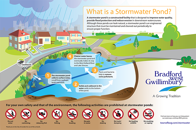 stormwater pond infographic